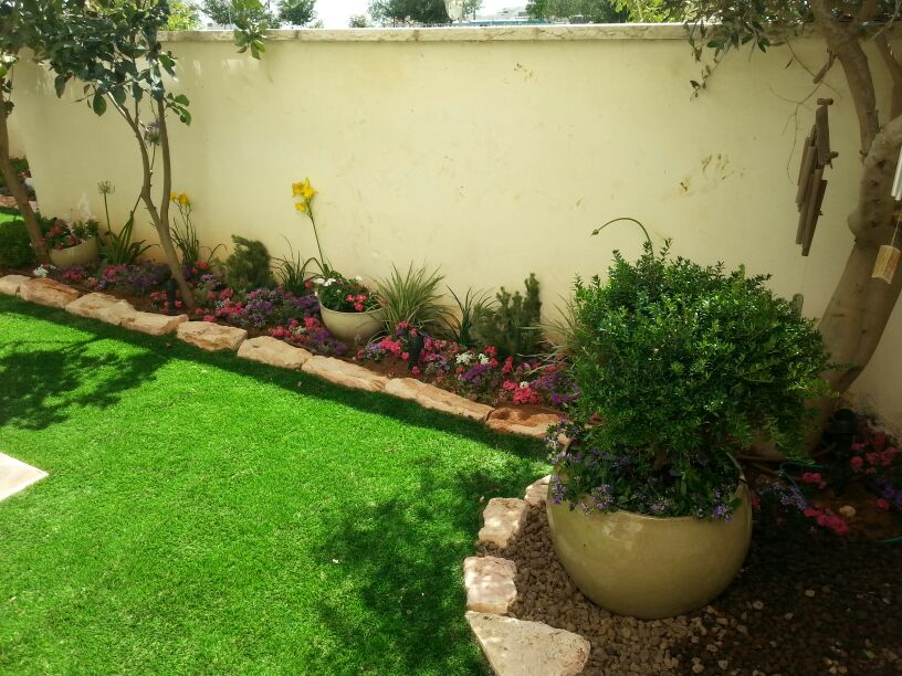 סוגי דשא סיננטי - התאמה אישית